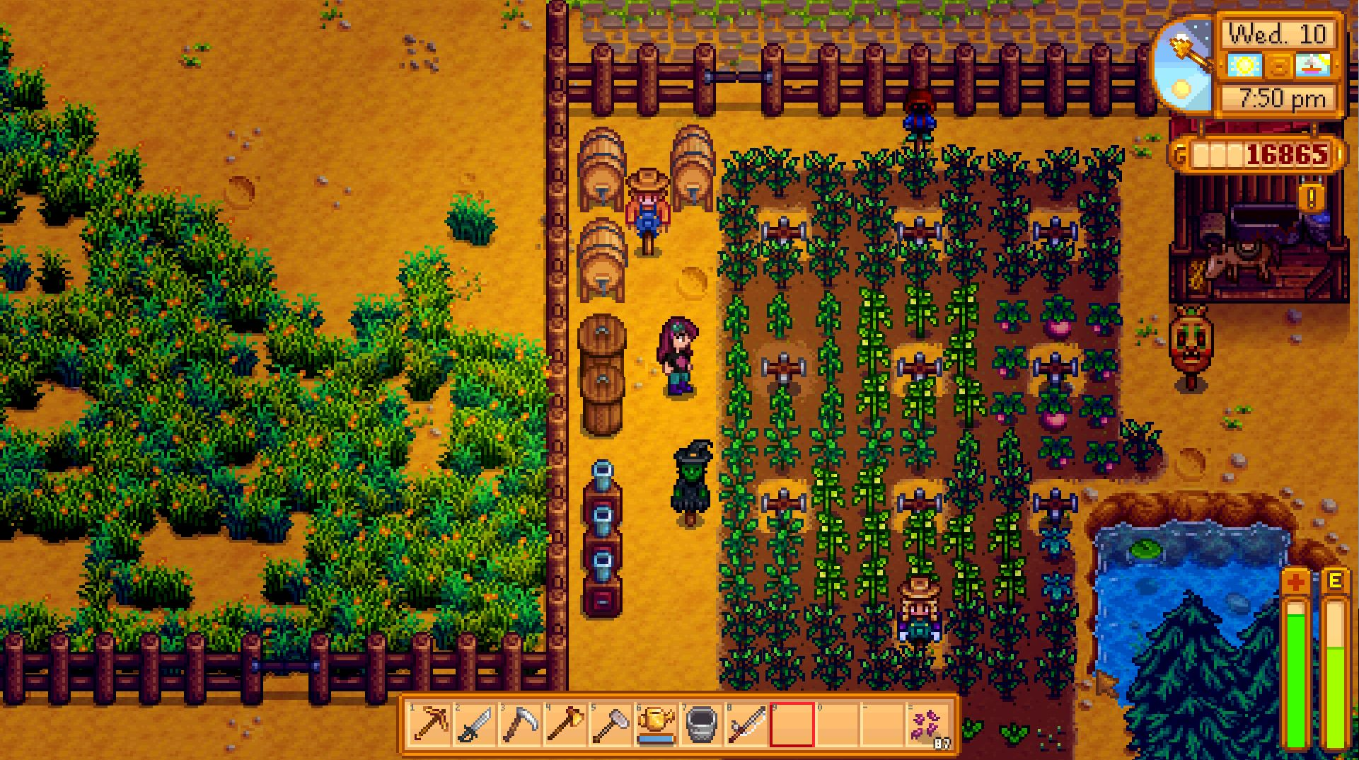 how to get eggs in stardew valley