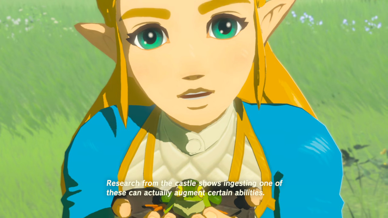 10 Things To Do After The Final Boss Of Breath Of The Wild